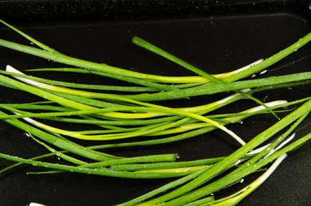 Top view of a green leek in water for washing and cooking.