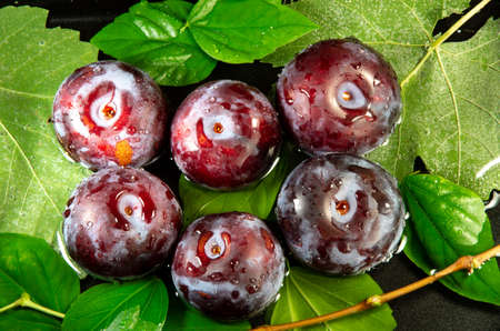 Directly above view of ripe and fresh purple plums close up on green leaves and water for washing. Stock Photo