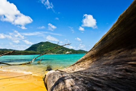 Nai Yang Beach Phuket Thailand photo