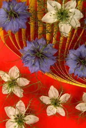 pistils: flowers, stamens and pistils