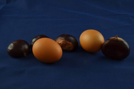 Fresh chestnuts with blu background and eggs