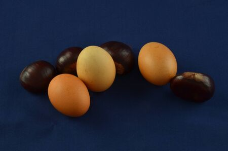 nutshells: Fresh chestnuts with blu background and eggs
