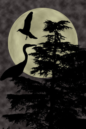 gray heron and dove fly on plant above the clouds looking upwards at full moon, cloudy dark night sky background. Dreamy magic skyline, artistic screen saver.