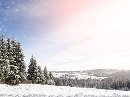 in winter: inverno