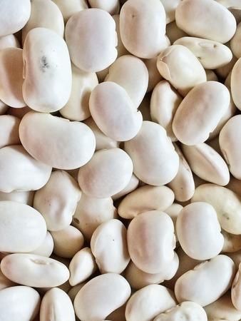 fagioli bianchi