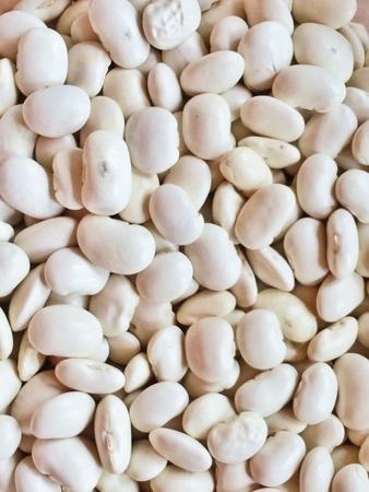 white beans: white beans Stock Photo