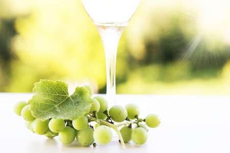 montreux: white grapes and wine glass, autumn background