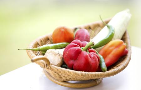 ration: Fresh organic vegetables. Autumn vegetables. Harvesting. Ingredients for the salad