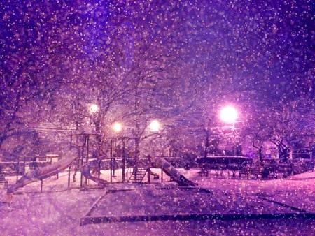 Night Winter city Park