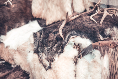 Winter is coming. Animal fur background