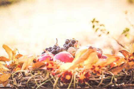 Autumn wreath decoration