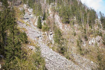 Illegal logging. Deforestation rock-fall hazard risk 版權商用圖片