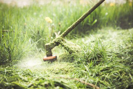Gras schneiden mit einem professionellen Rasentrimmer