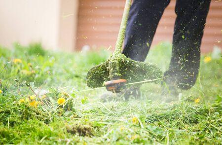 Cutting grass with a professional grass trimmer