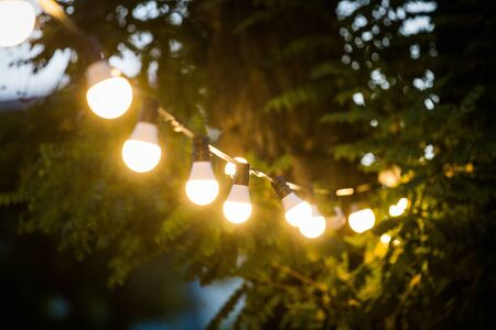 Garden lights on a string