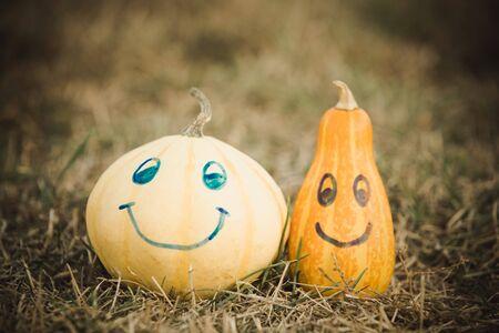 Happy Halloween cute pumpkin drawing