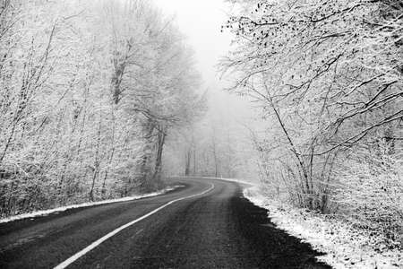 Beautiful winter landscape in the european forest. Snow on the trees. Enigmatic and amazing winter nature in black and white. Frosted trees branches. Stock Photo