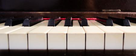 Ivory piano keys closeup. Music concept.