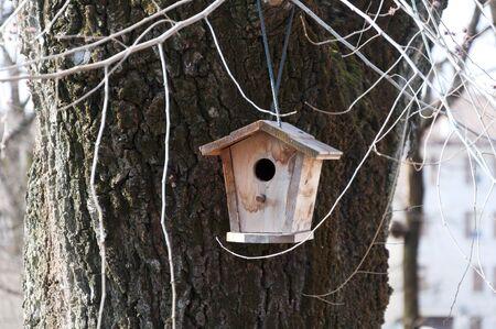 Vogelhaus auf dem Baum hängen in der Stadt Standard-Bild - 37516057