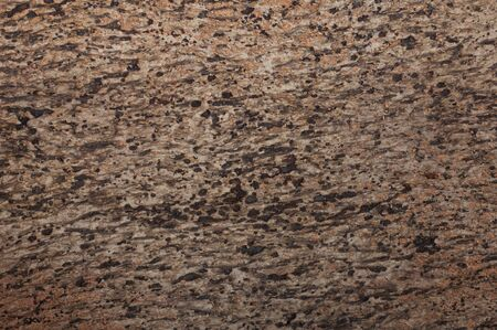 surface texture of tree bark as background Stock Photo