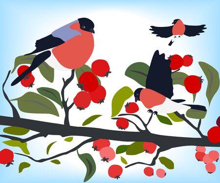 bullfinches op een tak van meidoorn, winterseizoen Stock Illustratie