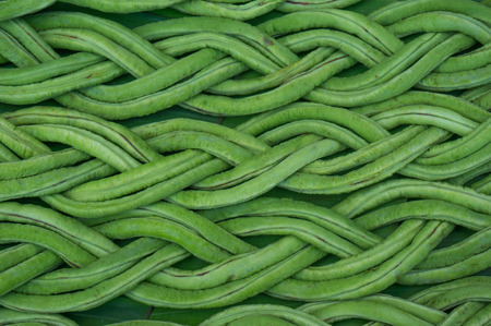 long bean: cow-pea (long bean)