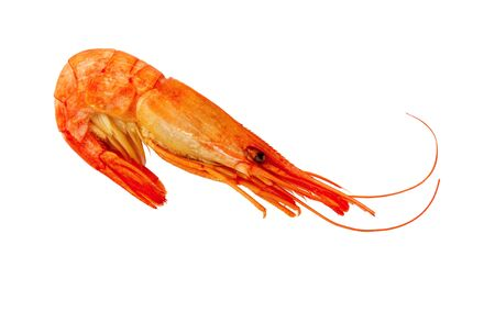 Shrimp isolated on white background. Cooked Prawns or Tiger Shrimps. Seafood. Reklamní fotografie