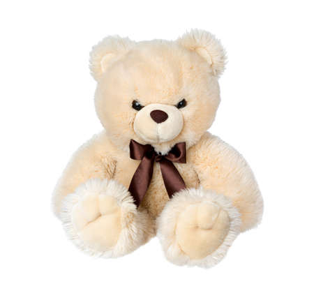 Toy teddy bear isolated on white background. Big Bear soft toy.