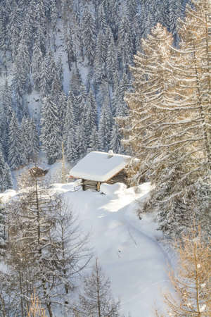 Wooden rustic style house at Switzerland Alps photo