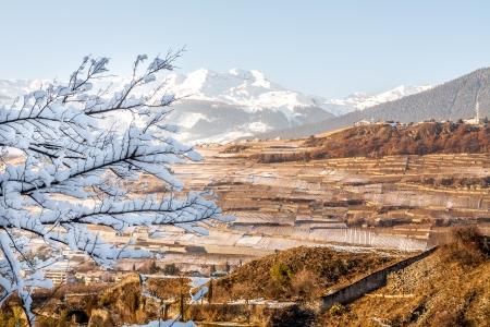 Panoramic view of Sion vineyards in Switzerland photo