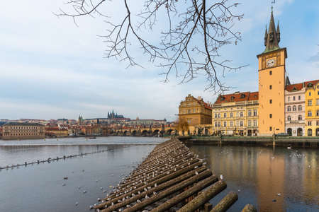 Prague, Czech Republic-January 31, 2019. View of Vltava river, old town buildings, Charles bridge and herring gulls on the wooden pols on late afternoon at Winter time. Sajtókép