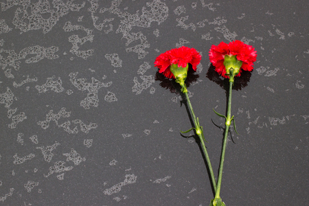 Red chrysanthemums on black stone surface in the rain. Celebration of anniversary of Victory in the Great Patriotic War. People lay flowers in memory of dead soldiers. Top view.