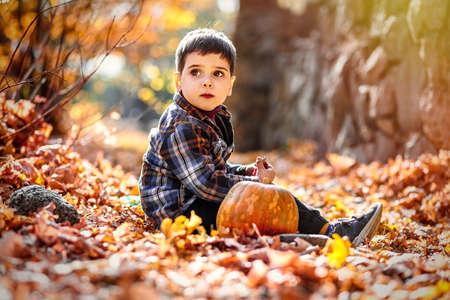 Caucasian boy 3-4 yo sitting on fall foliage next to pumpkin. Standard-Bild