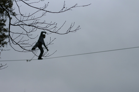 persevere: branch on the background fearless highliner walking on tight rope