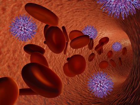 bloodstream: virus in the bloodstream of a blood vessel