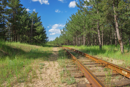 narrow gauge railroads: old and abandoned narrowgauge railway in the forest Stock Photo
