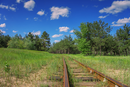 weather gauge: old and abandoned narrowgauge railway in the forest Stock Photo