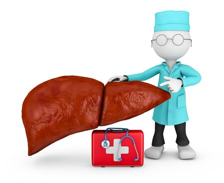 human liver: doctor with stethoscope explores the human liver Stock Photo