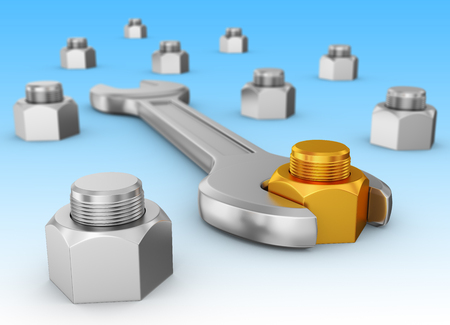 A wrench and a gold nut on the background of other nuts. 3d rendering.