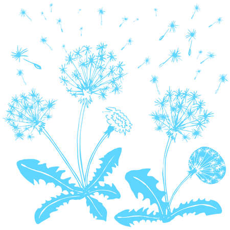 flower, a flower of the field, the weed Illustration