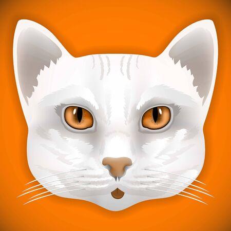 hair bow: cat, face, eyes, vector, animal, cute, kitten, bow, hair, facial, portrait,