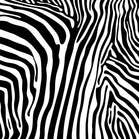 animalistic: savannah pattern vector background design elements zebra Illustration
