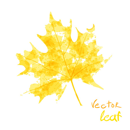 Watercolor orange leaf design autumn. Vector illustration Vettoriali