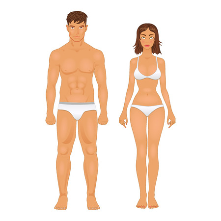 body parts: simple stylized illustration of a healthy body type of man and woman in retro colors