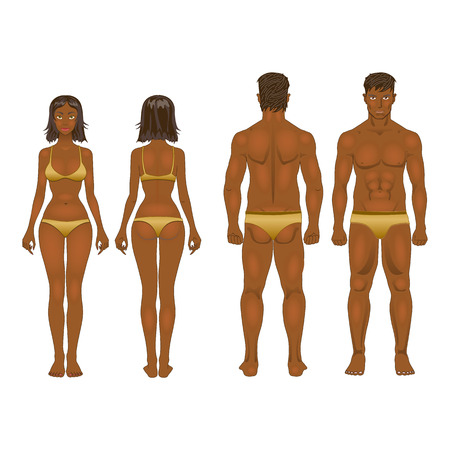 proportion: vector dolls, young woman and guy in underwear. Body templates