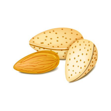 almonds: Almonds label - vector illustration  design  brown natural