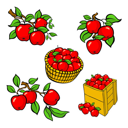 fully editable: Vintage colorful apple harvest set. Fully editable EPS10 vector. art