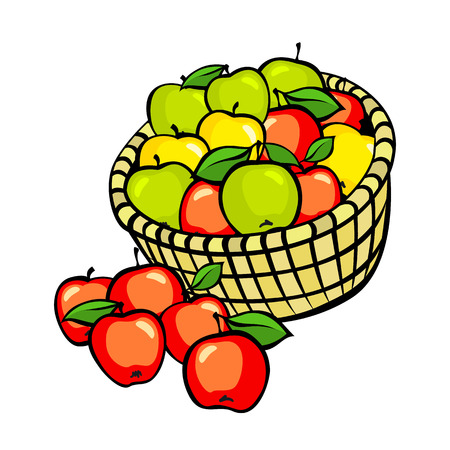 apples basket: Vintage colorful apple harvest set. Fully editable EPS10 vector. art