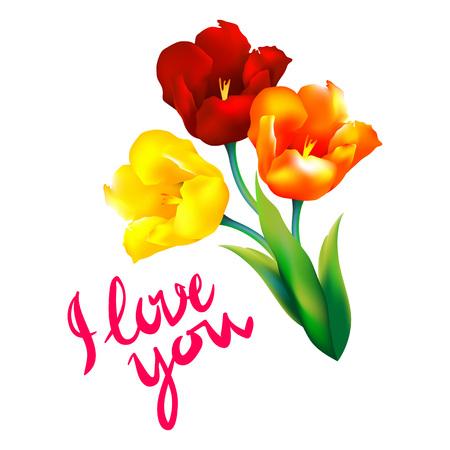 tulip flower: tulip flower design background floral card art Illustration