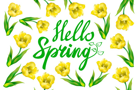 chik: yellow Tulip bouquet over white background with custom text Hello Spring. Vector illustration. art